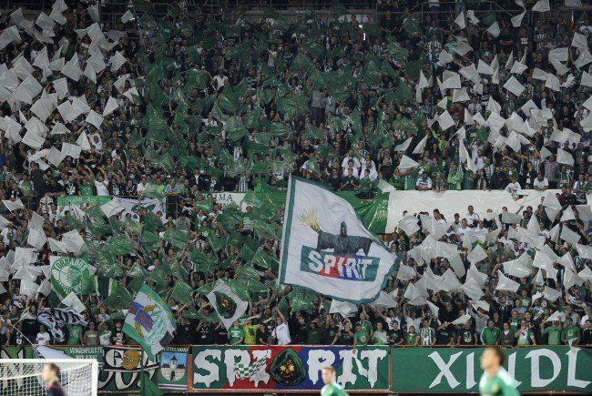 Am Mittwoch startet der Vorverkauf zum CL-Play Off zwischen Rapid Wien und Schachtar Donezl.