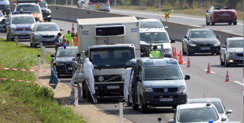 Ungarische Behörden sind nun dem Fahrzeughalter auf der Spur