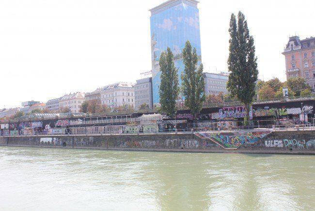 Zwei Polizisten retteten einen Betrunkenen aus dem Wiener Donaukanal.
