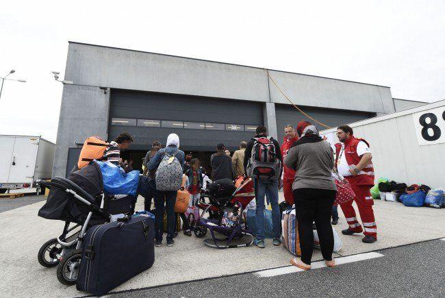 Die Flüchtlinge beziehen ihr neues Quartier am Flughafen Wien-Schwechat.