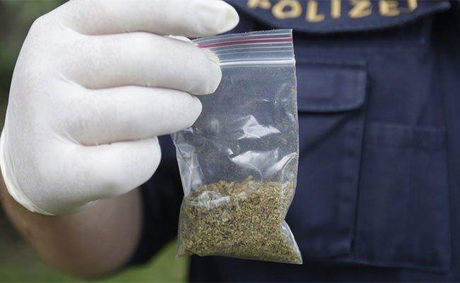 Bei dem Dealer wurden Marihuana-Säckchen gefunden.