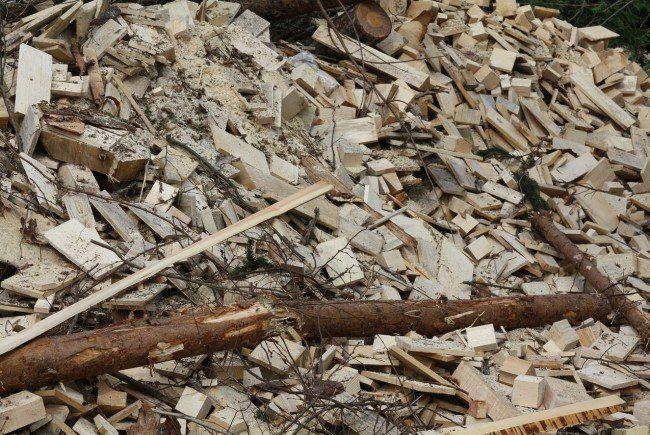 Holz ist als Biomasse-Produkt am meisten verbreitet.