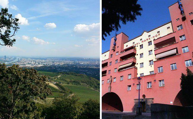 Vom Kahlenberg mit seinem herrlichen Blick auf die Stadt bis hin zum Karl-Marx-Hof reichen die Döbling-Highlights