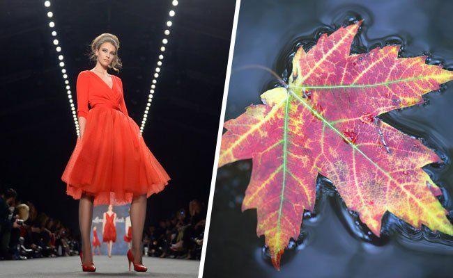 Diesen Herbst sind knallige Rottöne voll im Trend.