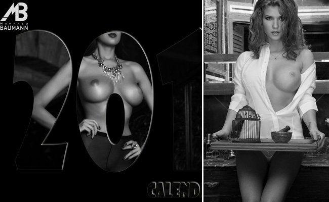 Der Fine Nude Art Kalender 2016 von Manfred Baumann.