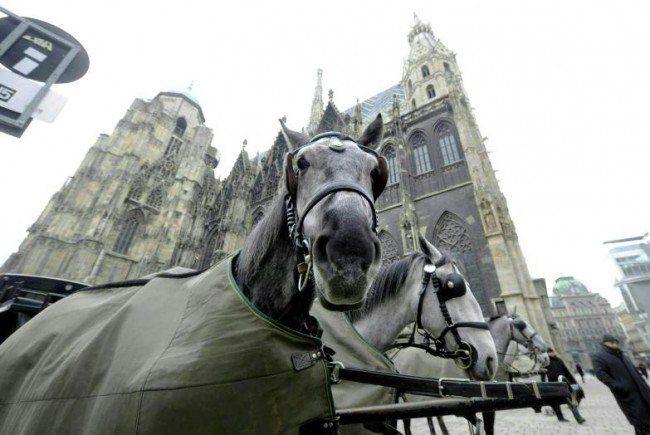Gratis-Fahrt mit den Fiakern in Wien.