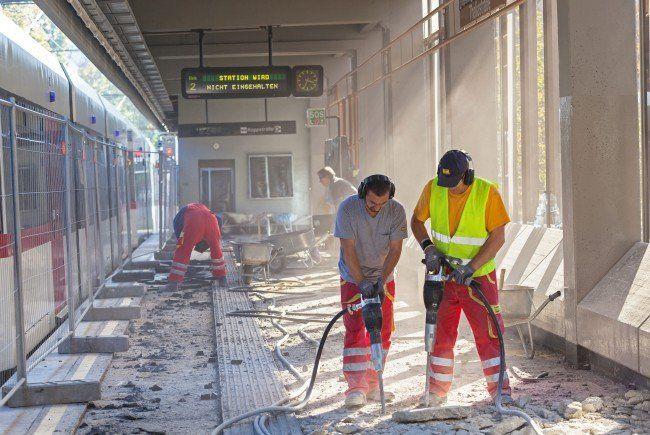 Die Bahnsteigsanierung der Station Thaliastraße ist abgeschlossen.