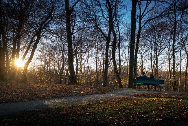 Im November konnten sich Spaziergänger über teilweise sehr warmes Wetter freuen.