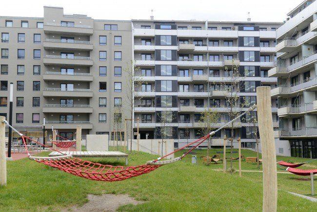 """""""Wohnen soll leistbar bleiben"""": Darauf pocht die Plattform Wohnungsbau."""