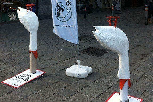 """Bilder der Aktion """"Stoppt das Stopfen""""."""