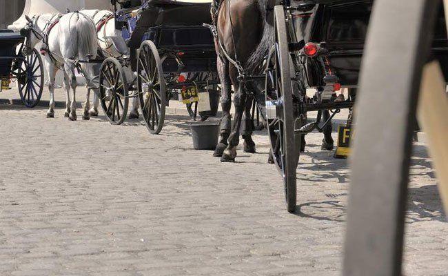 Die Geschichte der Stadt findet sich in den Straßen Wiens