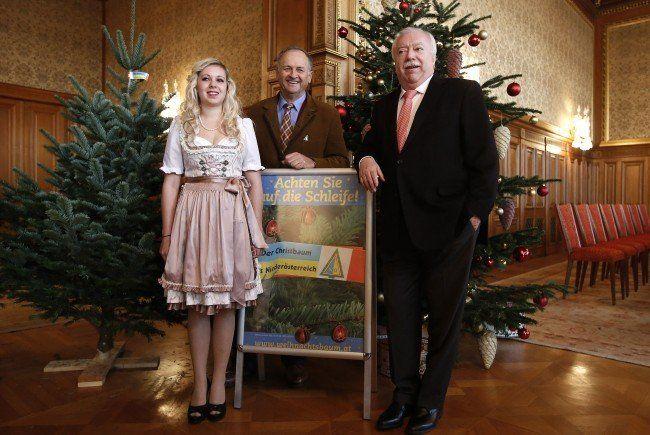 Der Bürgermeister und zwei Christbaumbauern bei der Saison-Eröffnung.