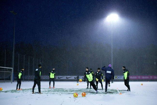 Trainingsbeginn für die Wiener Austria.