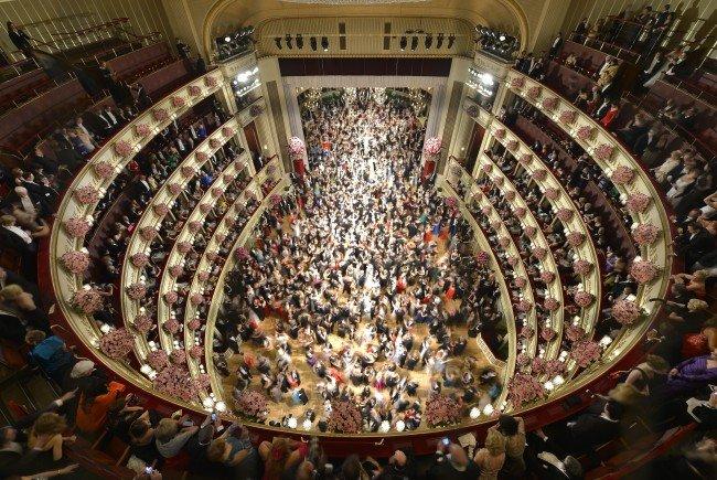 So schillernd wird der Wiener Opernball 2016.