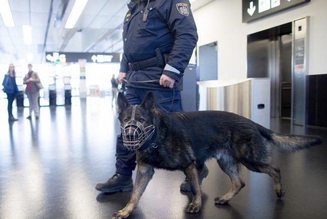 Brüssel-Terror - Mehr Polizei am Flughafen Schwechat