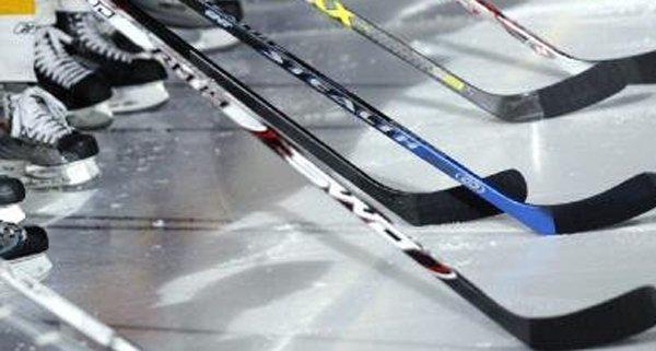 Vienna Sabres wurden zum 13. Mail österreichischer Frauen-Eishockey-Meister.