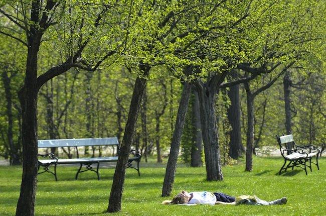 Im Schlosspark Schönbrunn kam es zu einem Polizeieinsatz