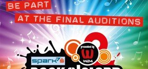 Donauinselfest: 7. Rock The Island Contest und die Final Auditions