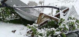 Schnee verursachte große Schäden in der Landwirtschaft