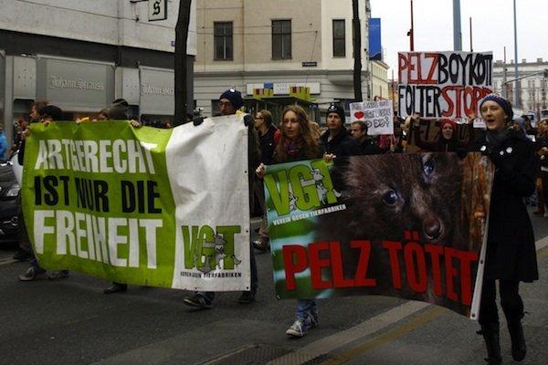 Der VGT wird auf der Mariahilfer Straße gegen Tierleid demonstrieren