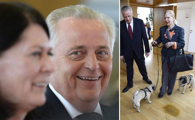 Hundstorfers Komitee, sowohl zwei- als auch vierbeinig, wurde präsentiert.