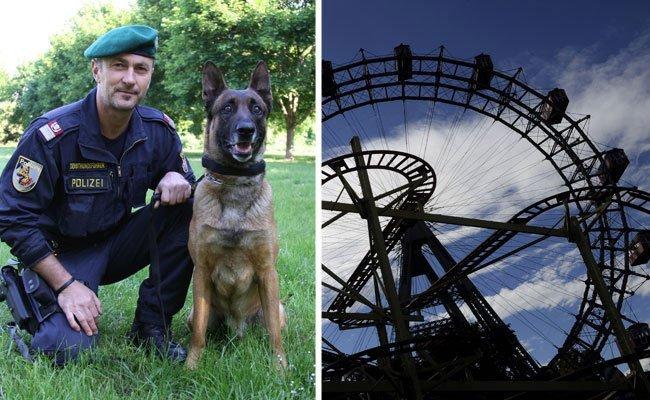 Auch die Künste der Polizeidiensthunde werden den Kindern im Wiener Prater vorgeführt.