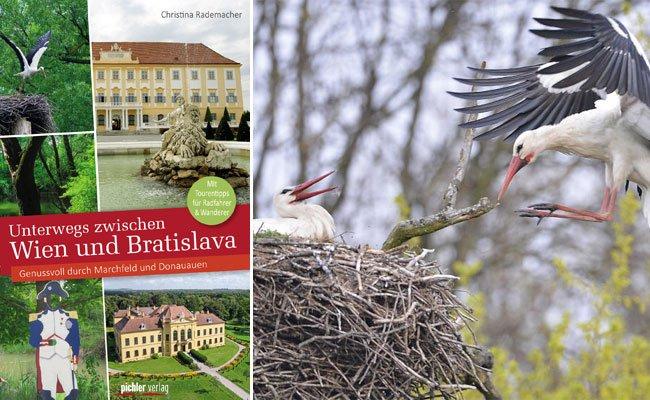 Die Natur-Schönheit zwischen Wien und Bratislava entdecken.