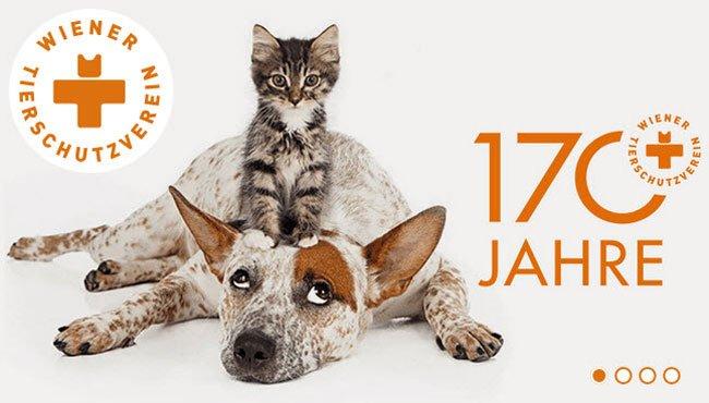 Der Tierschutzverein lädt zur großen Feier.