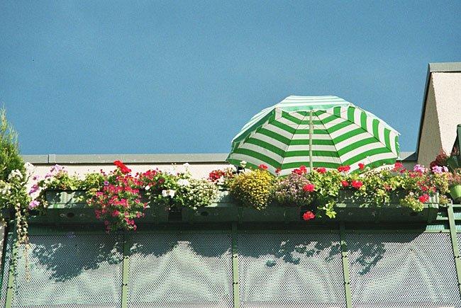 Urlaub auf Balkonien steht für so manchen Wiener auf dem Programm