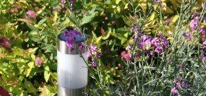 Die 10 besten Gadgets für Garten und Balkon