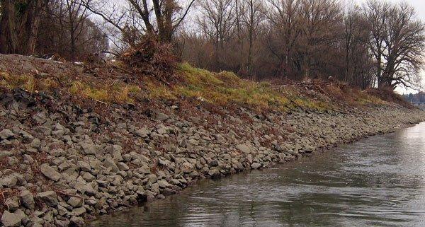 In der Donau wurde eine Wasserleiche angeschwemmt