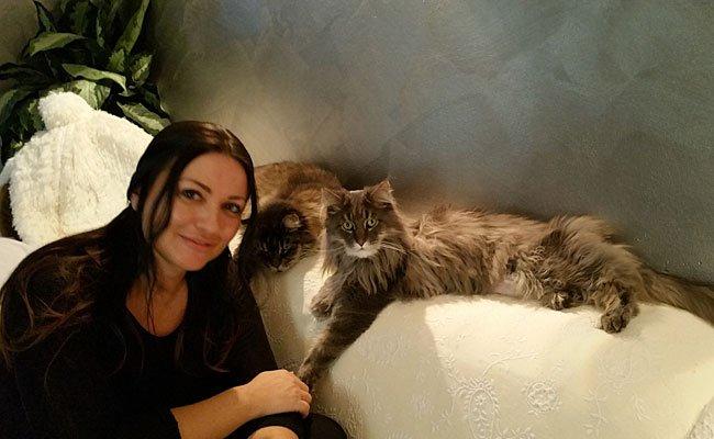 Katzen-Coach Petra Ott bei der Arbeit mit den Samtpfoten