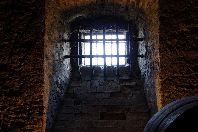 In einem Keller in Hernals wurde ein Einbrecher gefasst