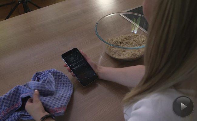 Was tun, wenn das Handy nass wird?
