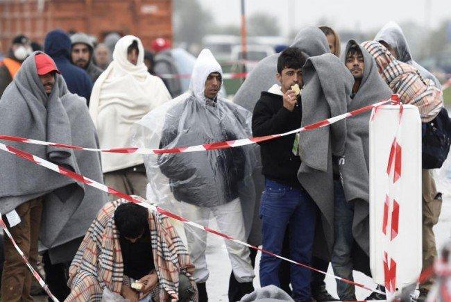 Die FPÖ fordert einen Stopp der Flüchtlingsaufnahme.