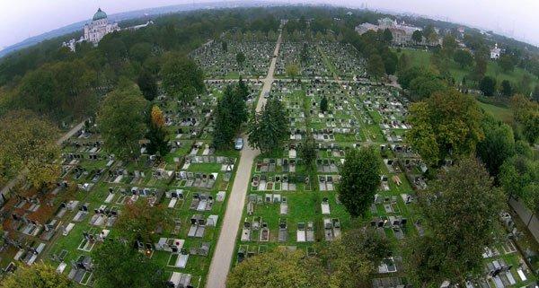 """Die """"Pokemon Go""""-Spieler machen auch vor dem Wiener Zentralfriedhof nicht halt."""