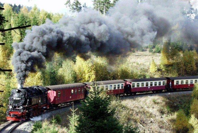 Die Schmalspurbahn ist ein beliebtes Ausflugsziel im Waldviertel.