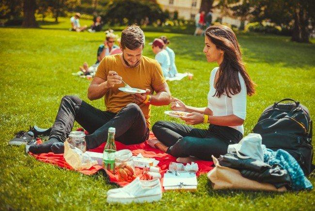 Am 21. August wird im Burggarten beim Green Brunch gepicknickt.