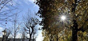 Der Floridsdorfer Schlingermarkt lädt zum Herbstfest