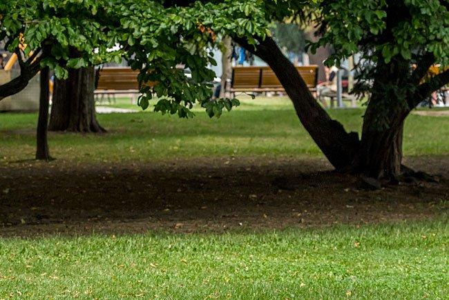 In einem Park in Margareten kam es zu Handgreiflichkeiten