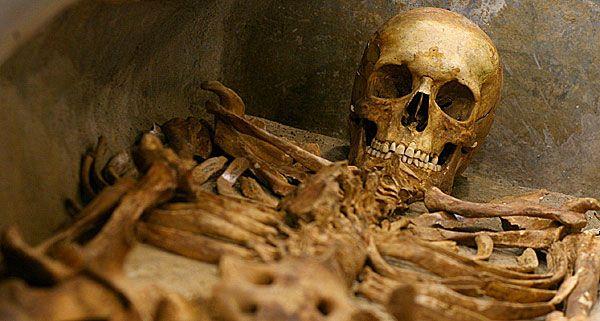 In Wien-Leopoldstadt wurden am Donnerstag menschliche Knochen gefunden.