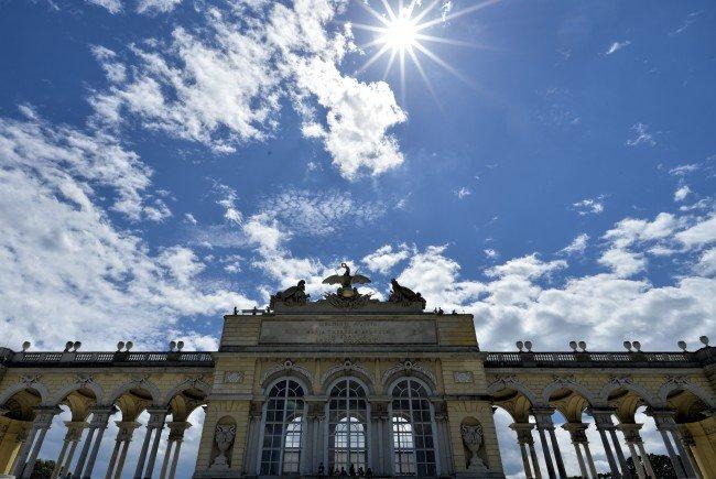 Die Wien-Karten ist ab September auch ab mit einer 24 Stunden Option erhältlich