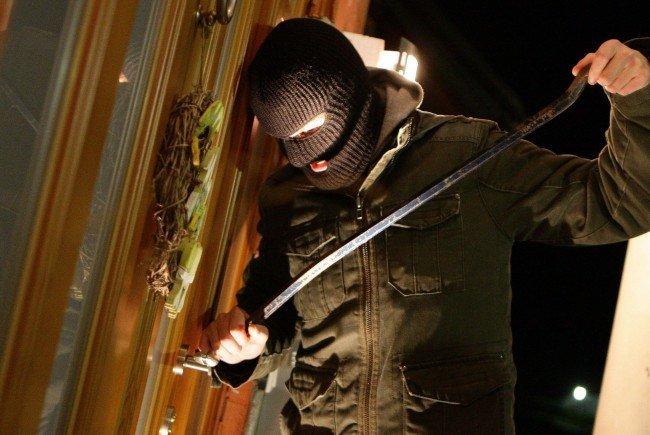 Der Einbrecher in ein Wohnhaus in Wien-Donaustadt wurde auf frischer Tat ertappt.