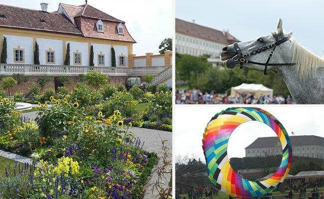 Das Schloss Hof hat diesen Herbst so manches Highlight zu bieten