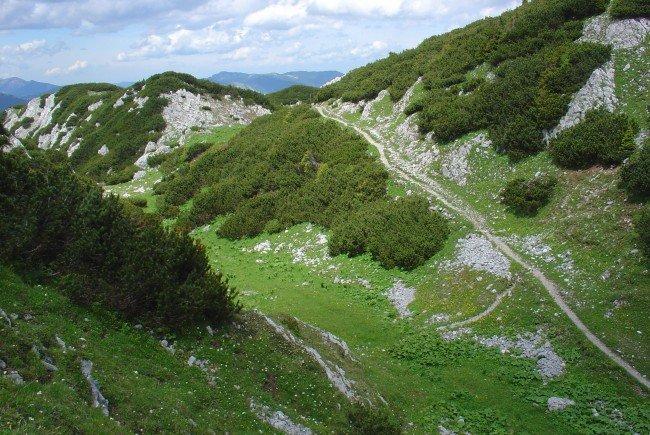Die Bergrettung Reichenau hatte diesen Sonntag viel zu tun.