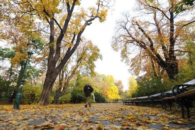 Nun hält das Herbstwetter Einzug.