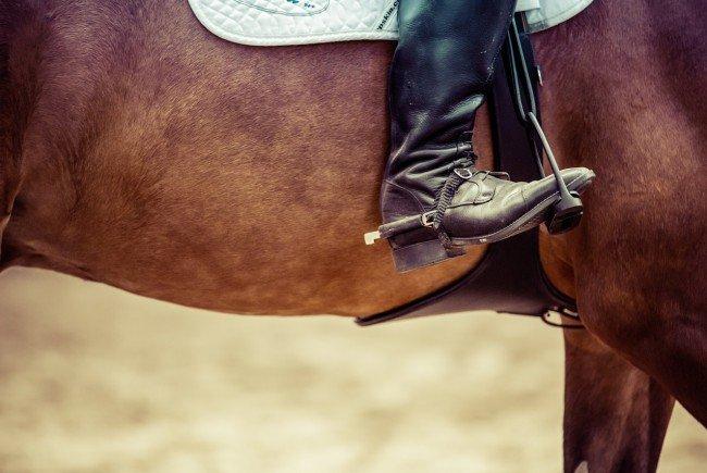 """Ein """"Clown"""" erschreckte ein Pferd und seine Reiterin beim Ausritt."""