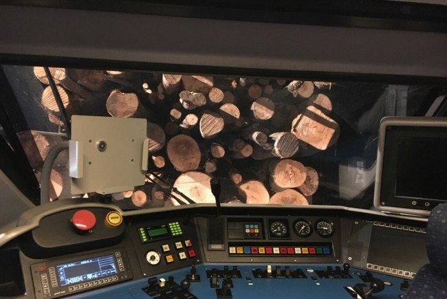 Die Güterwaggons waren mit Holz beladen.