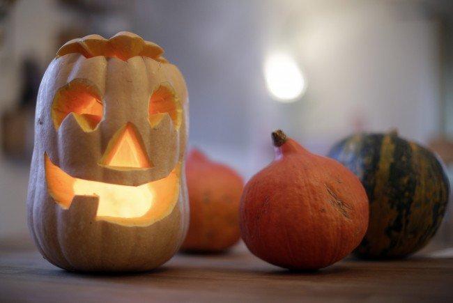 Die Polizei in Niederösterreich verweist auf die gute Präventivarbeit vor Halloween.