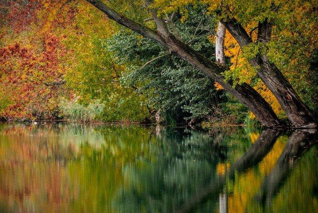 Am Mittwoch geht der Herbst offiziell zu Ende